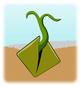seed-1