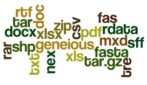 fileTypes_wordle